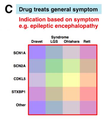 epileptic encephalopathy indication