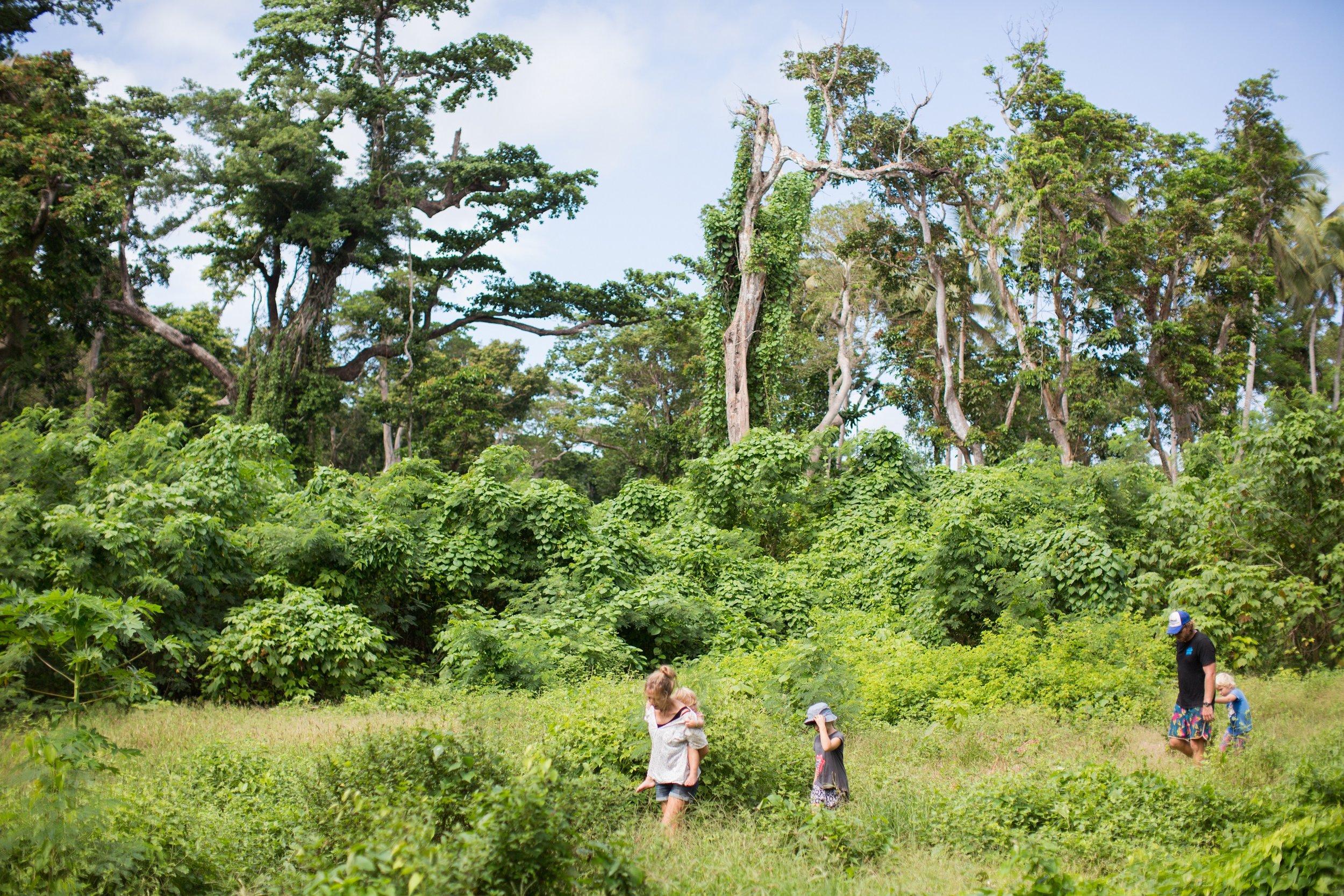 Vanuatu adventures