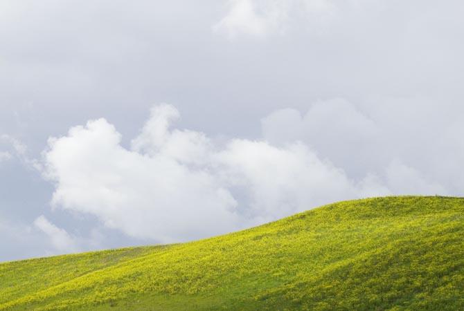 Fattoria-Barbialla-Nuova-rain