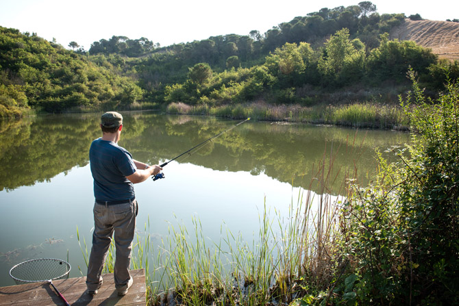 A pond with carps and black basses for fishing in wild nature. Mirror carps and black basses fishing in Tuscany.