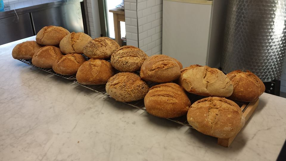 Sour dough bread made from Francesco for the guests of Fattoria Barbialla Nuova