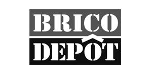 brico depot.jpg