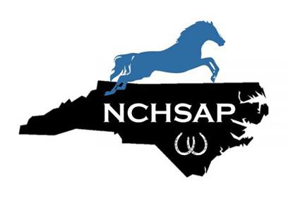 NCHSAP.jpg