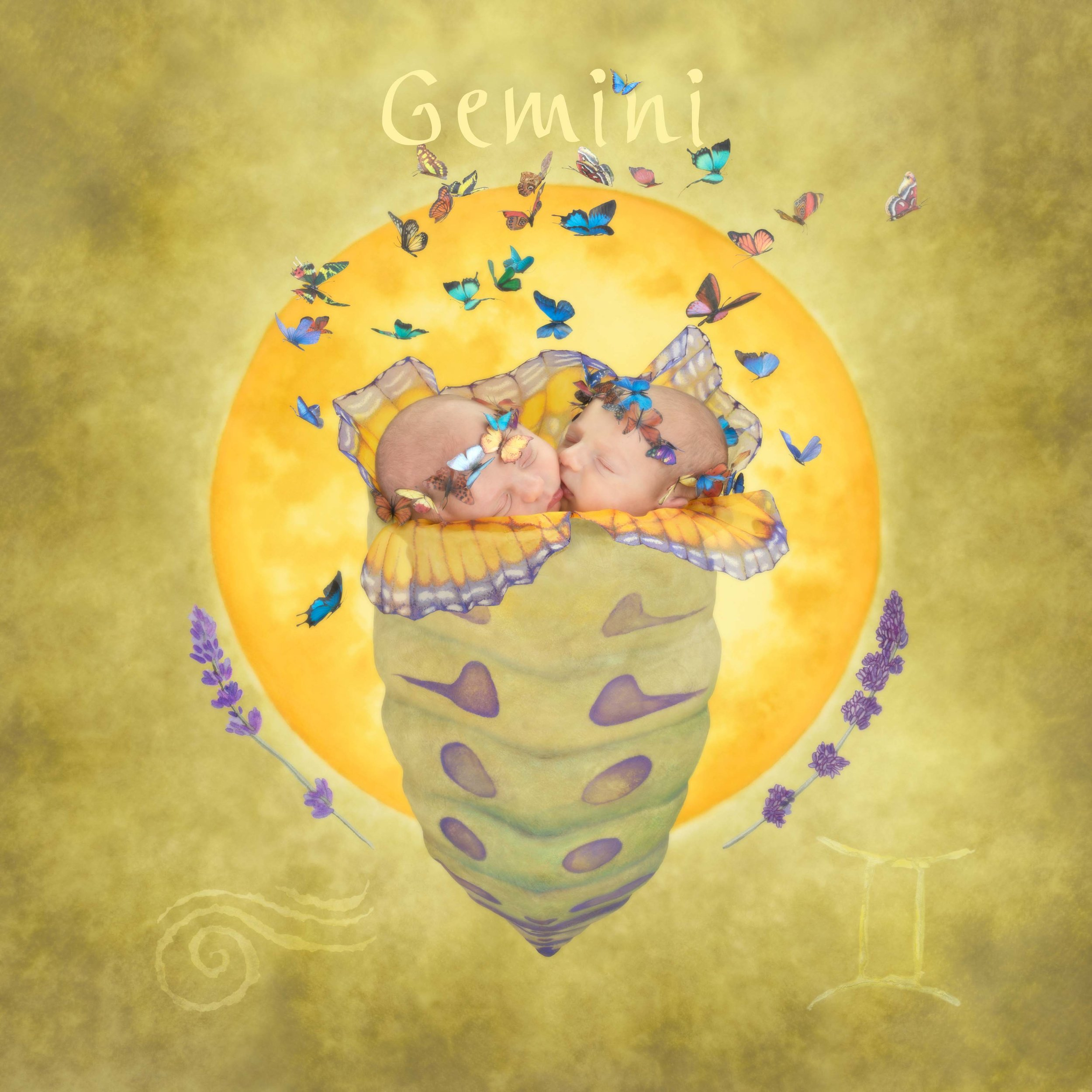 Gemini.jpg