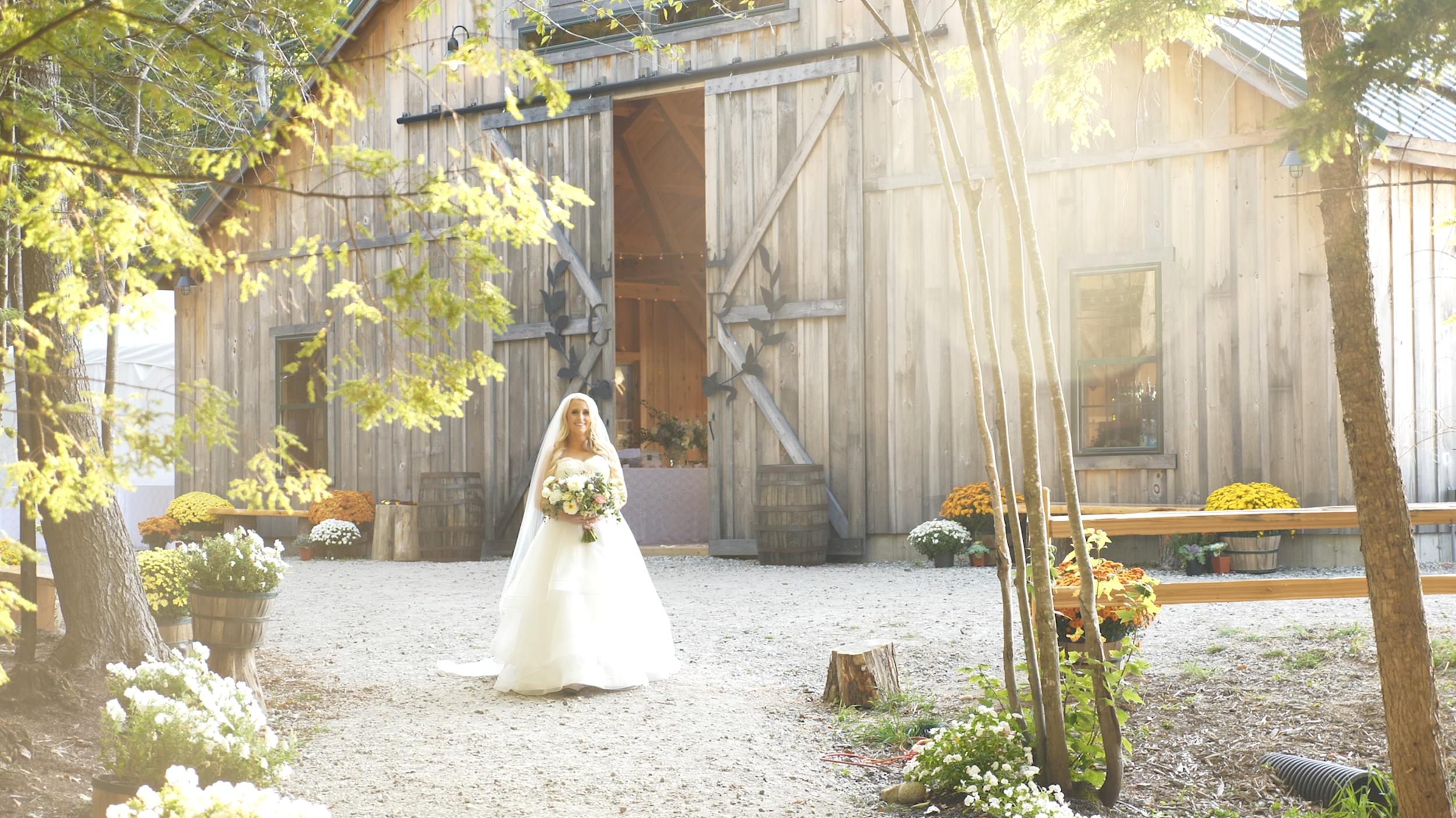 Bride Walking 1.png