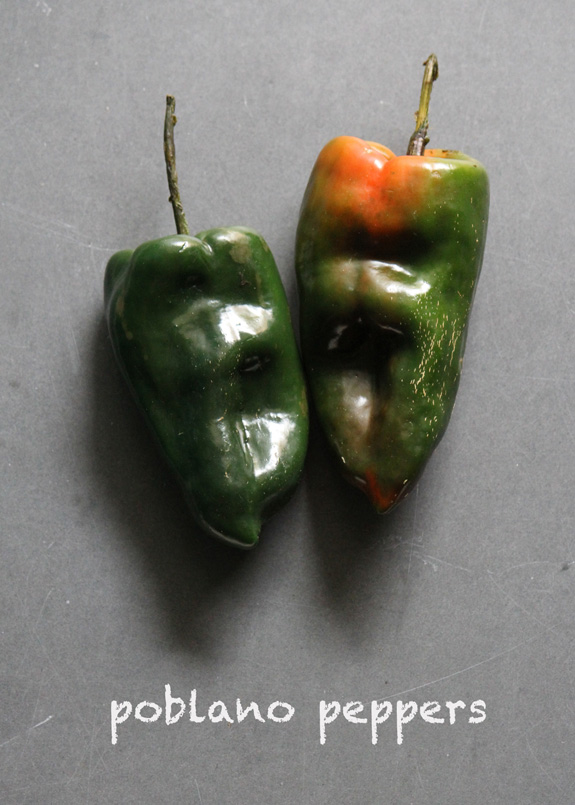 SFC_peppers_poblano_labeled.jpg