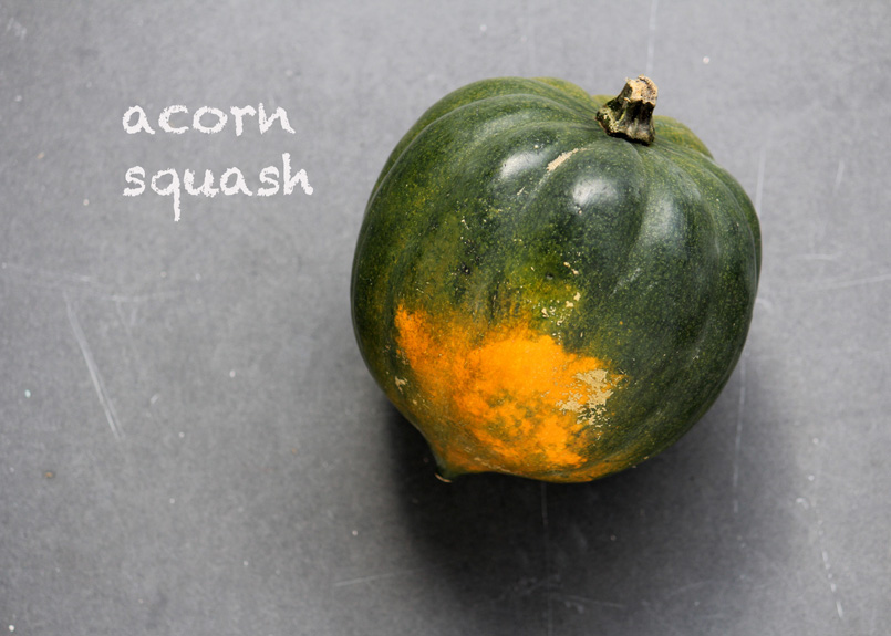 SFC_squash_acorn_labeled.jpg