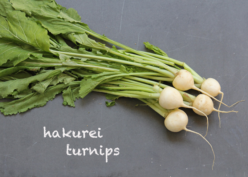 SFC_turnips_hakurei_labeled.jpg