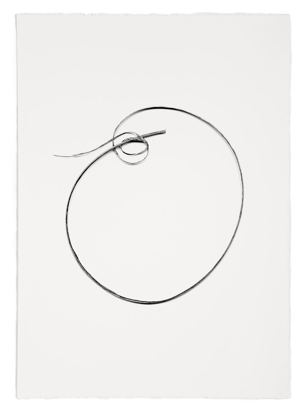 "Blades of Grass #48  , inkjet print, 40 x 32"" 2003"
