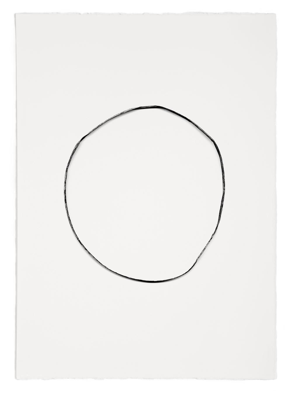 "Blades of Grass # 50  , inkjet print, 40 x 32"" 2003"