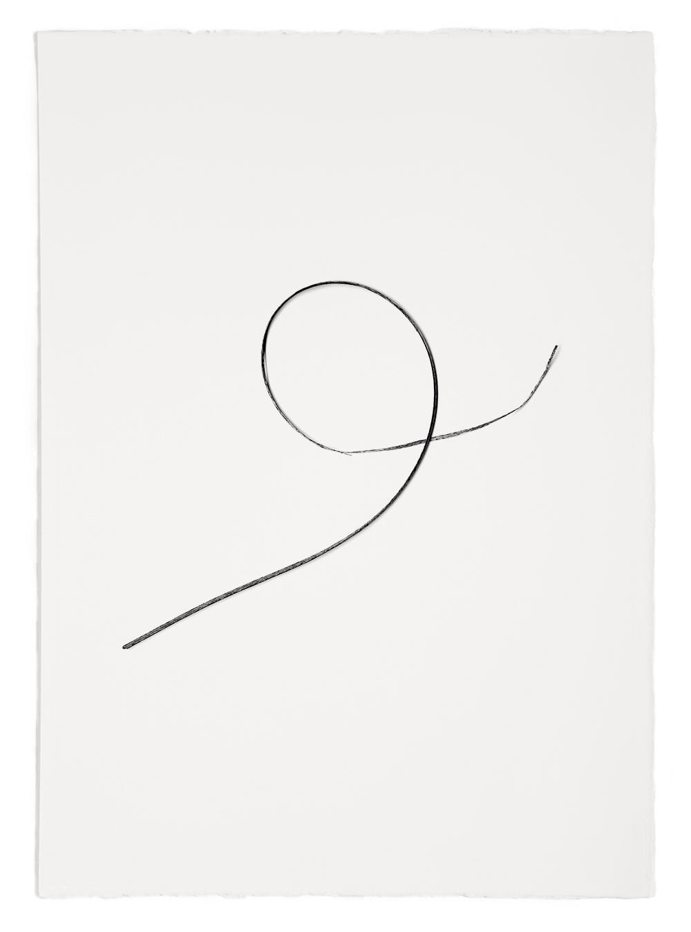 "Blades of Grass # 52  , inkjet print, 40 x 32"" 2003"