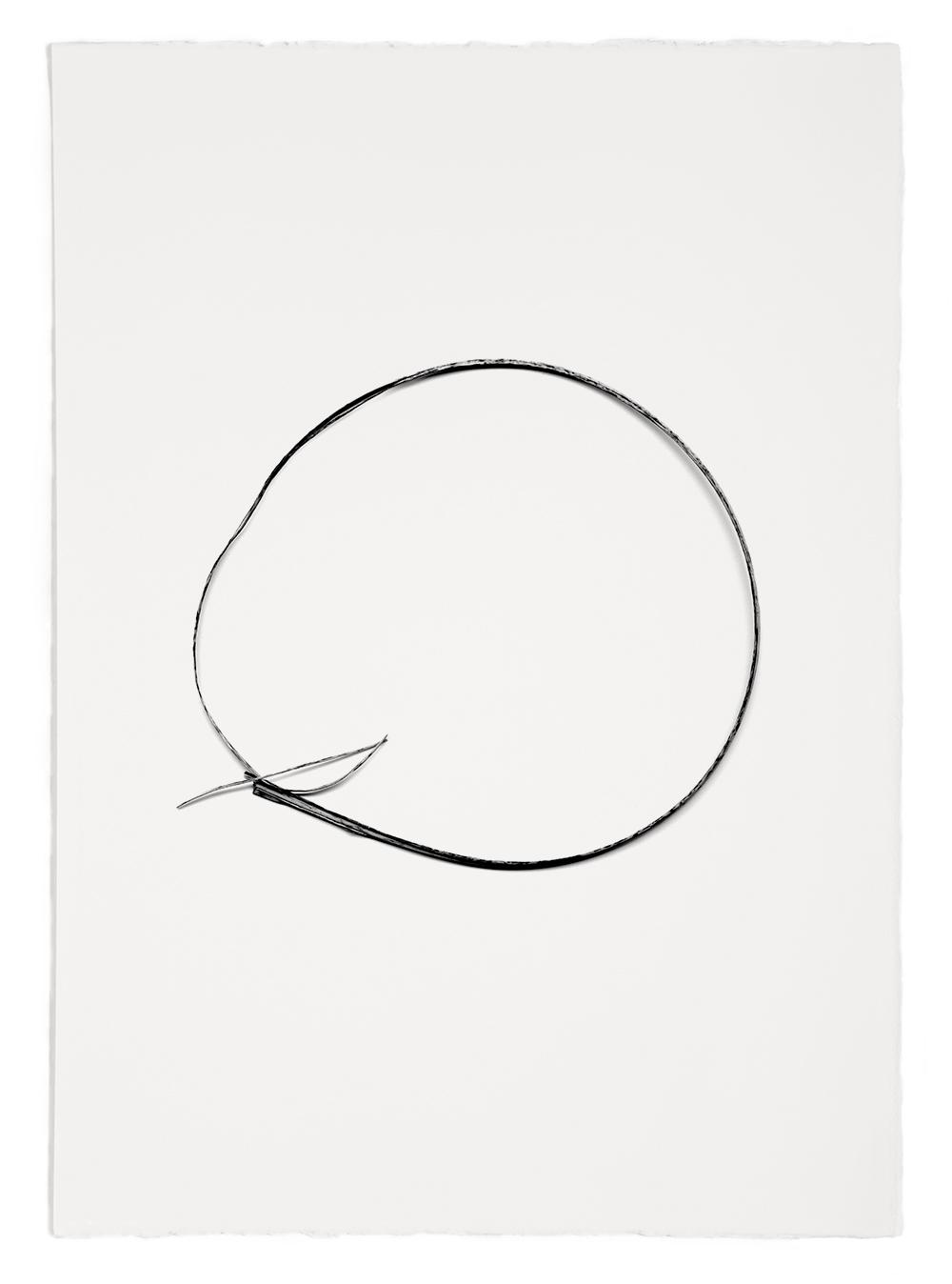 "Blades of Grass # 51  , inkjet print, 40 x 32"" 2003"