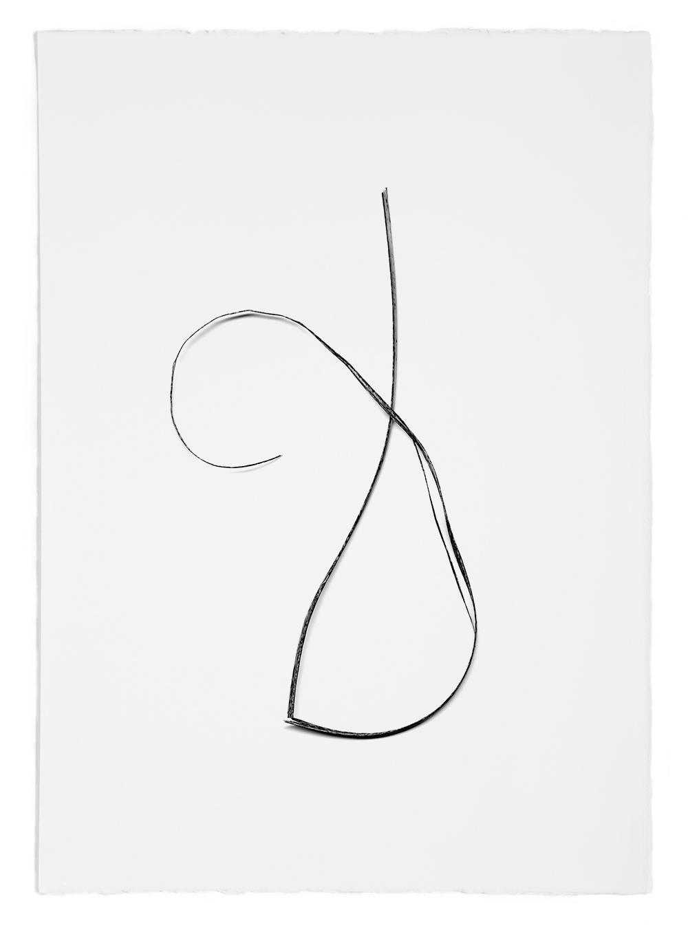 "Blades of Grass # 54  , inkjet print, 40 x 32"" 2003"