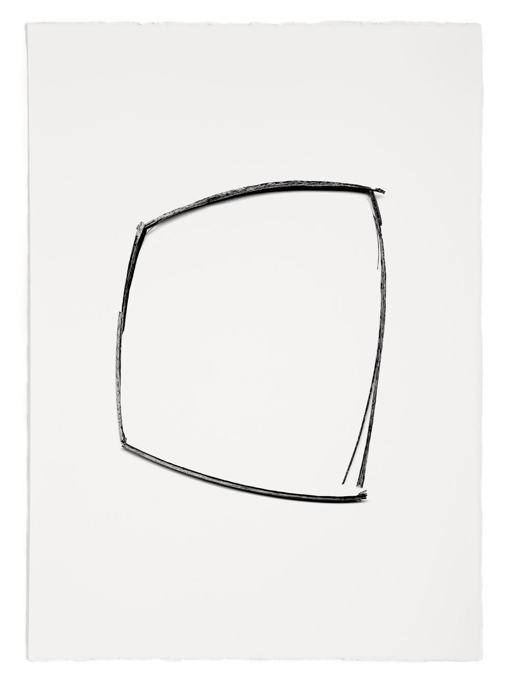 "Blades of Grass # 55  , inkjet print, 40 x 32"" 2003"