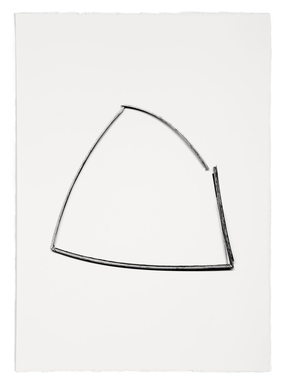 "Blades of Grass # 57  , inkjet print, 40 x 32"" 2003"