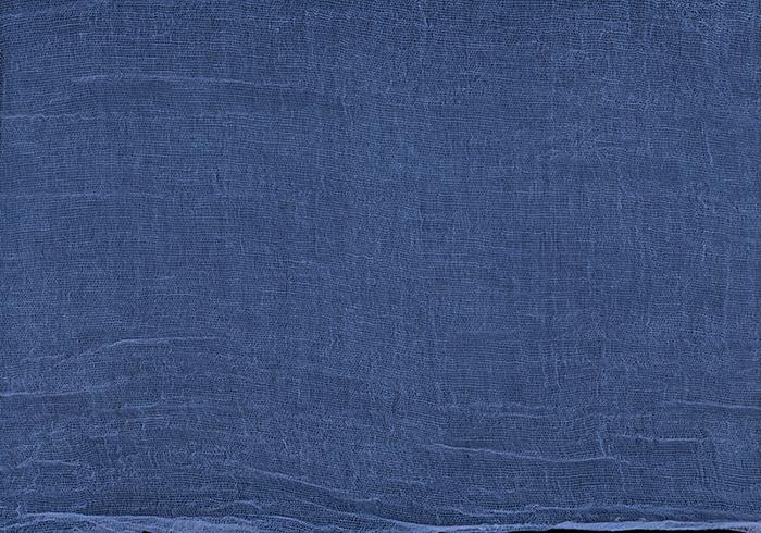 "blue/indigo inkjet print,20 x 28.5""2008"