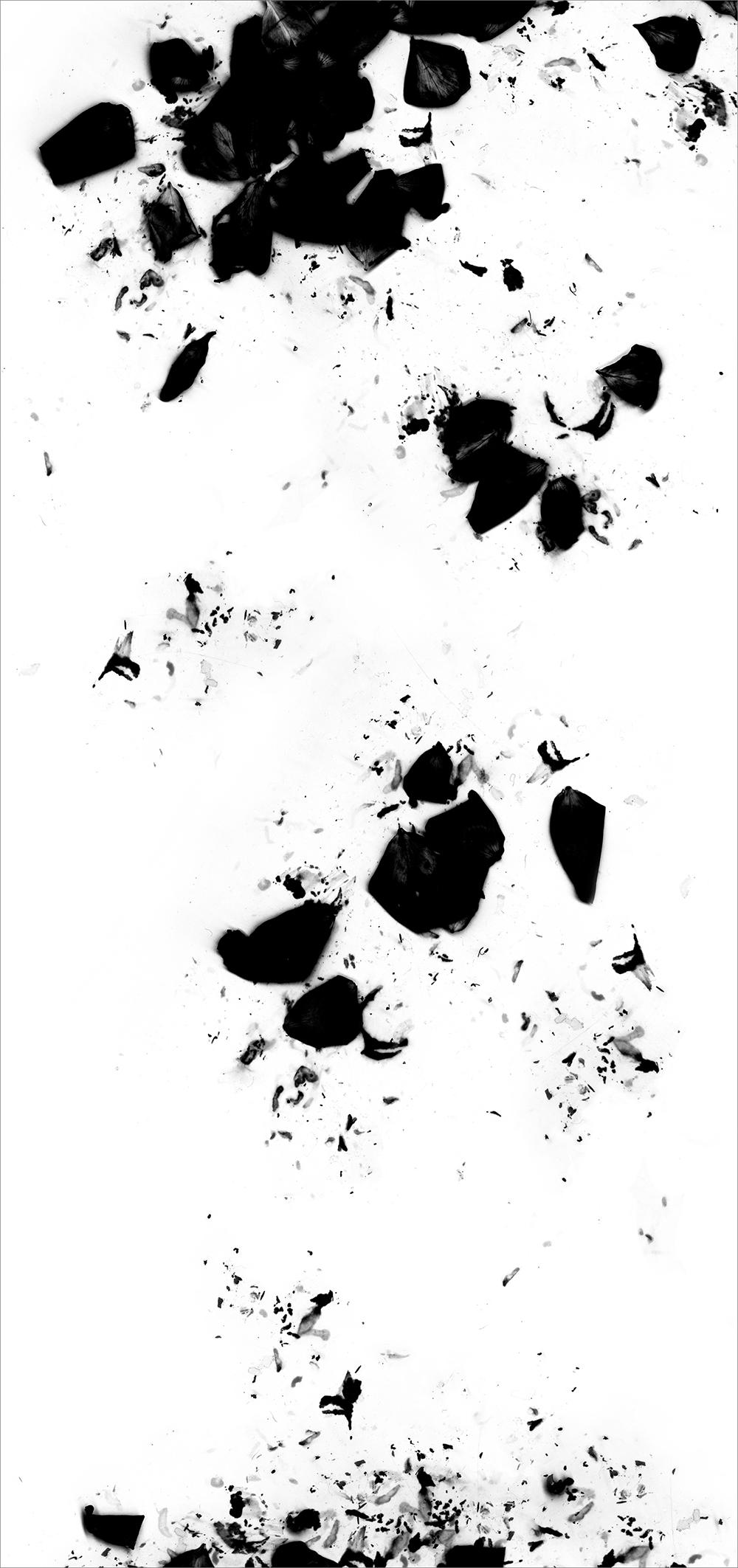 "#  2   inkjet print  , 90 x 44""  2009"