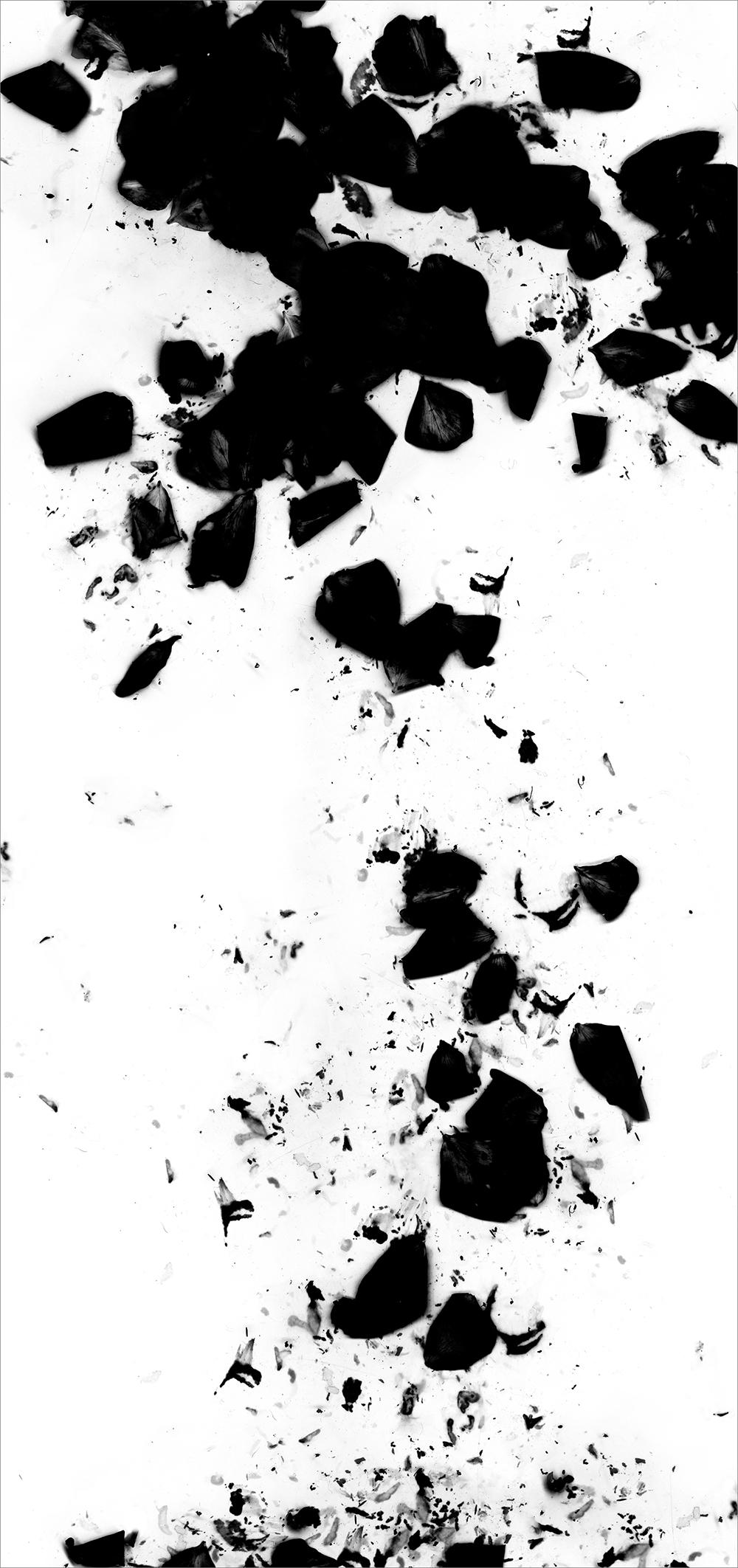 "#  3   inkjet print  , 90 x 44""  2009"