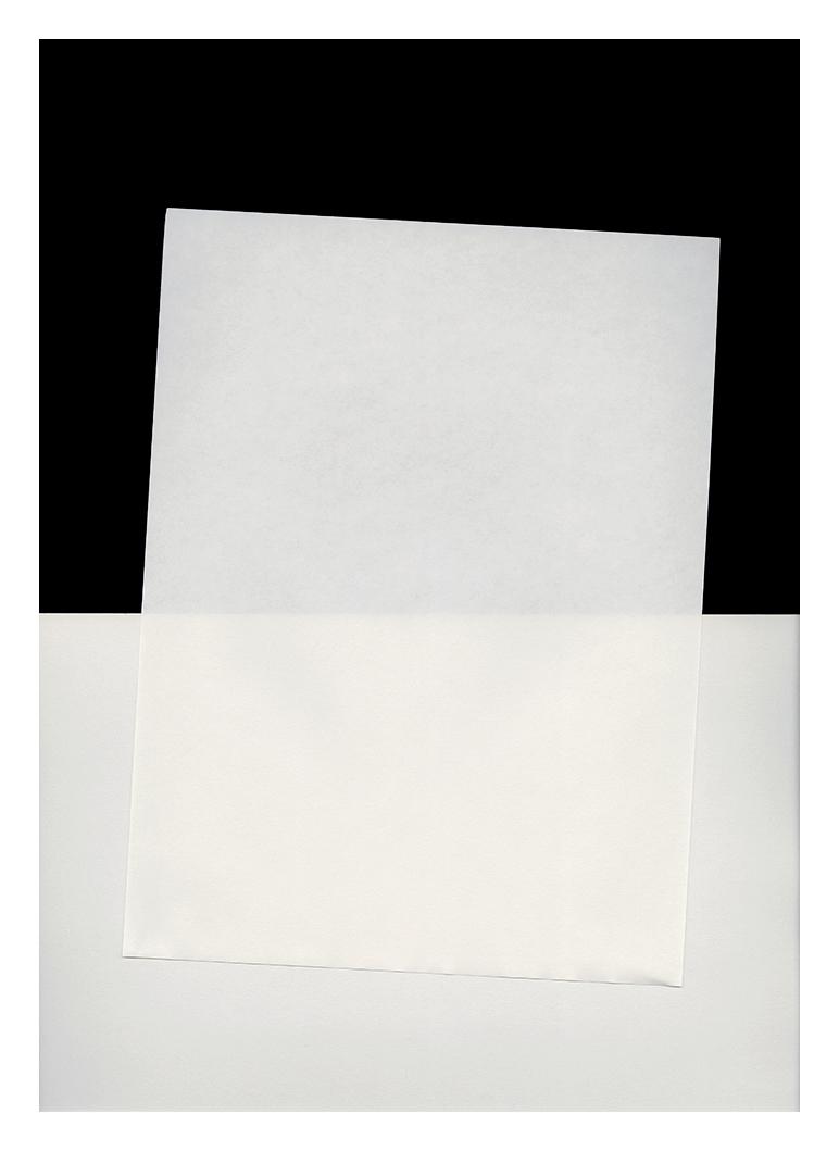 "The Thing Itself #34 (feb 2014) inkjet print 17 x 12"""