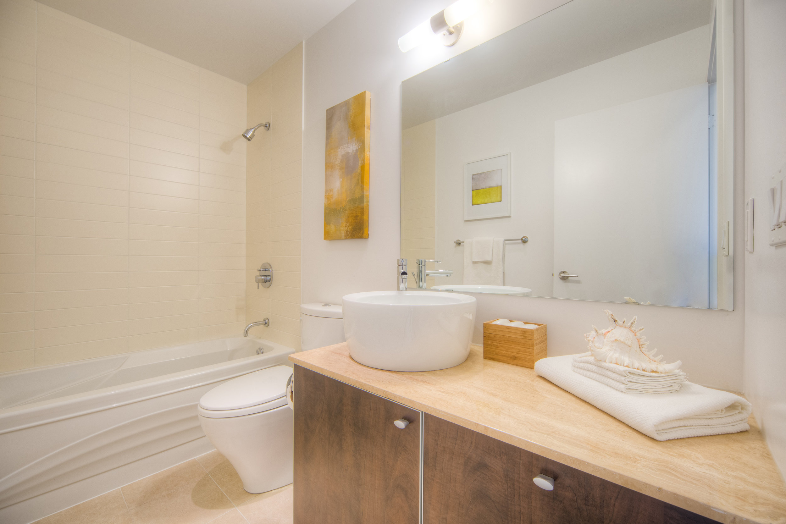 Washroom - Condo Real Estate Staging
