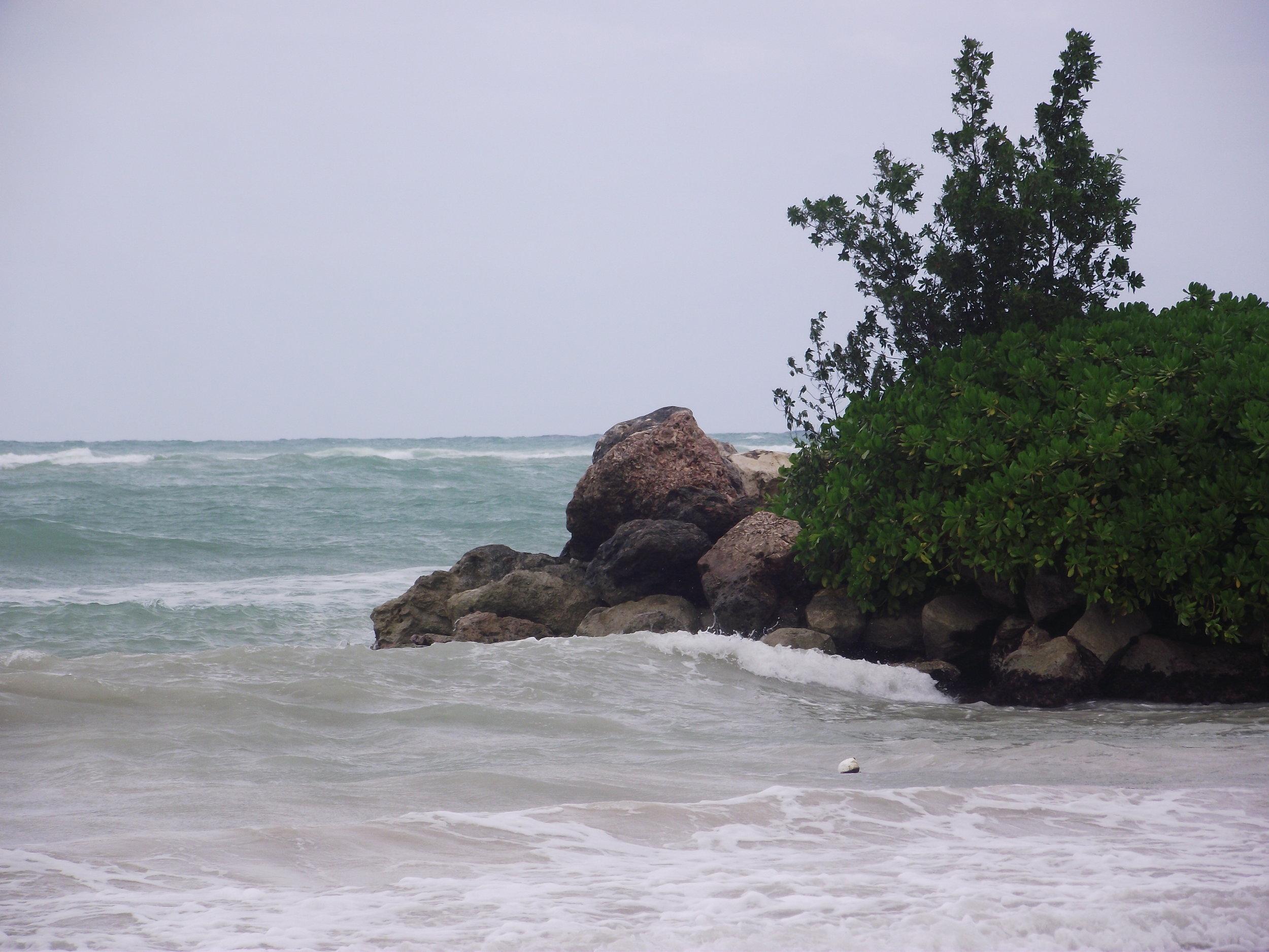 Kimberly C. Lyons_KCL-IDESIGN, LLC_Jamaica 2010 (226).JPG