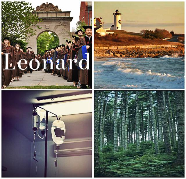 Marriage+Plot+Leonard.jpg