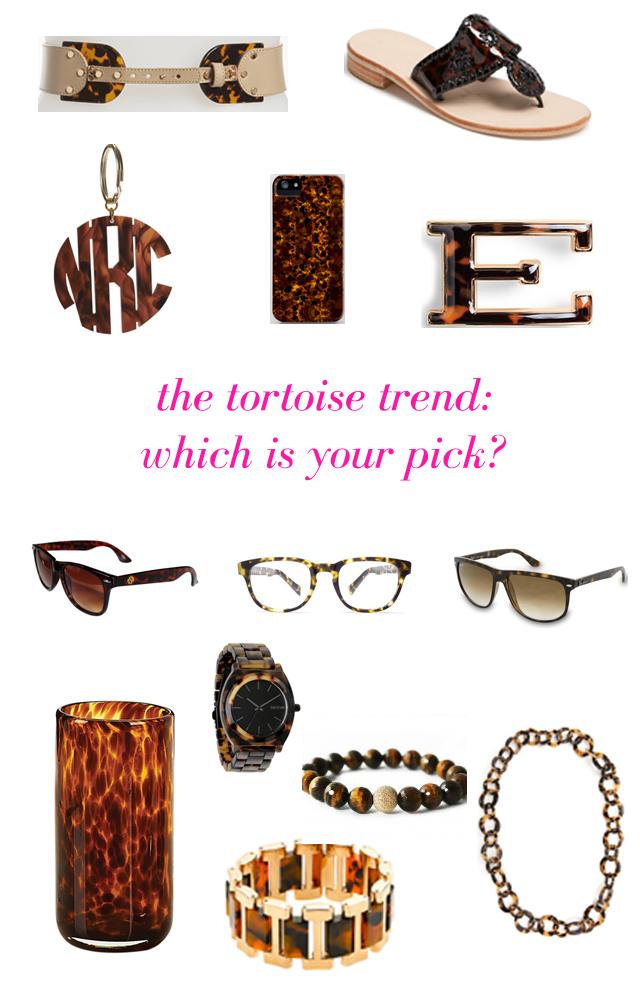 tortoise_final.jpg
