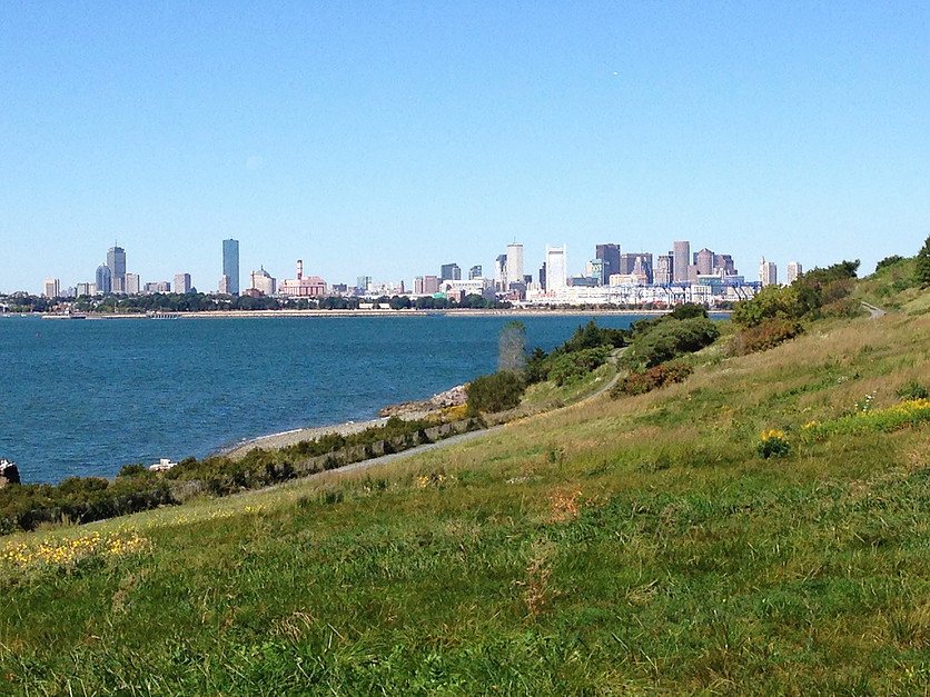 view from Spectacle Island