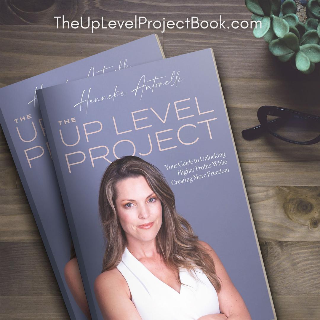 theuplevelprojectbook.com