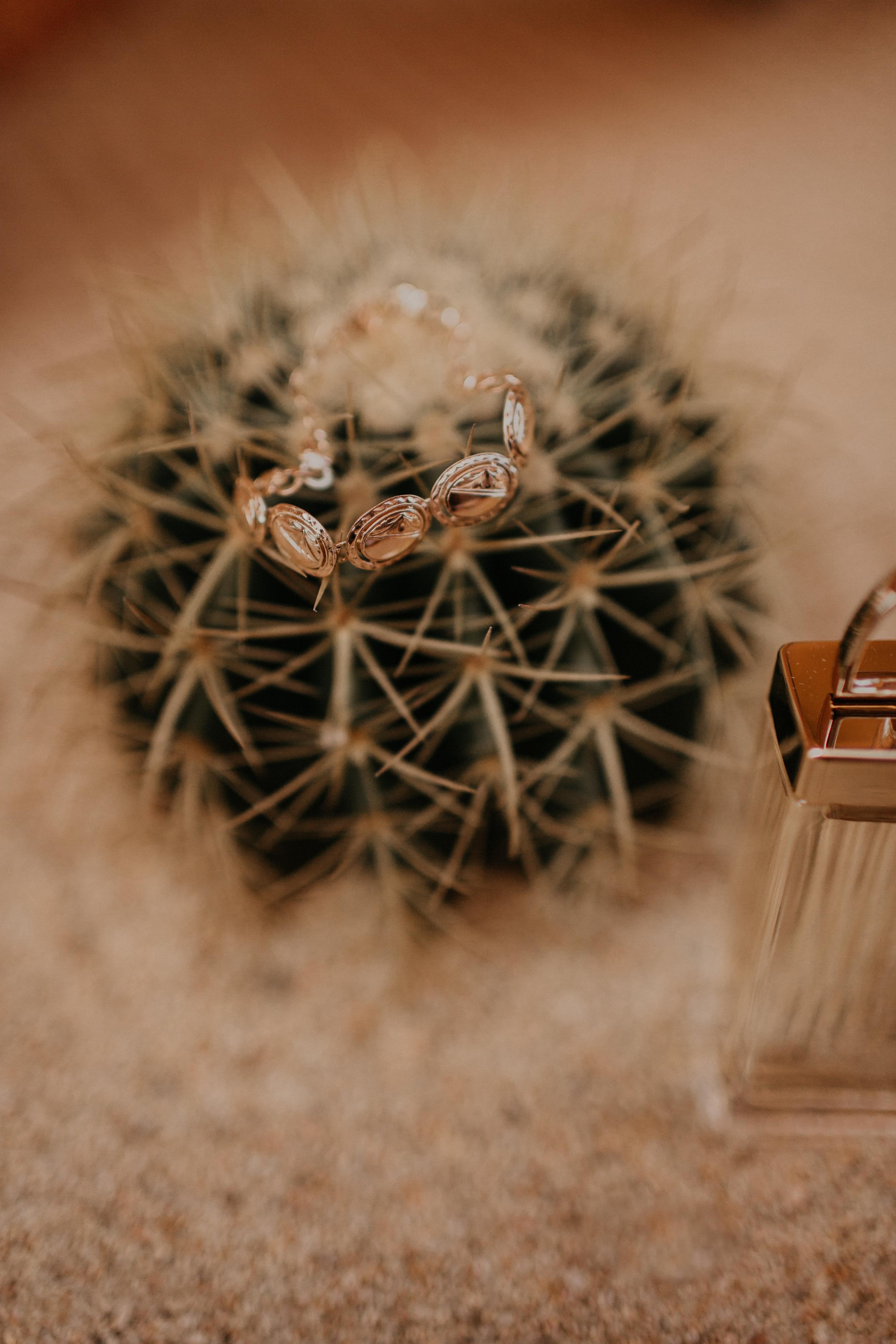 Carson_Alex_Cabo_Mexico_Wedding-88.jpg