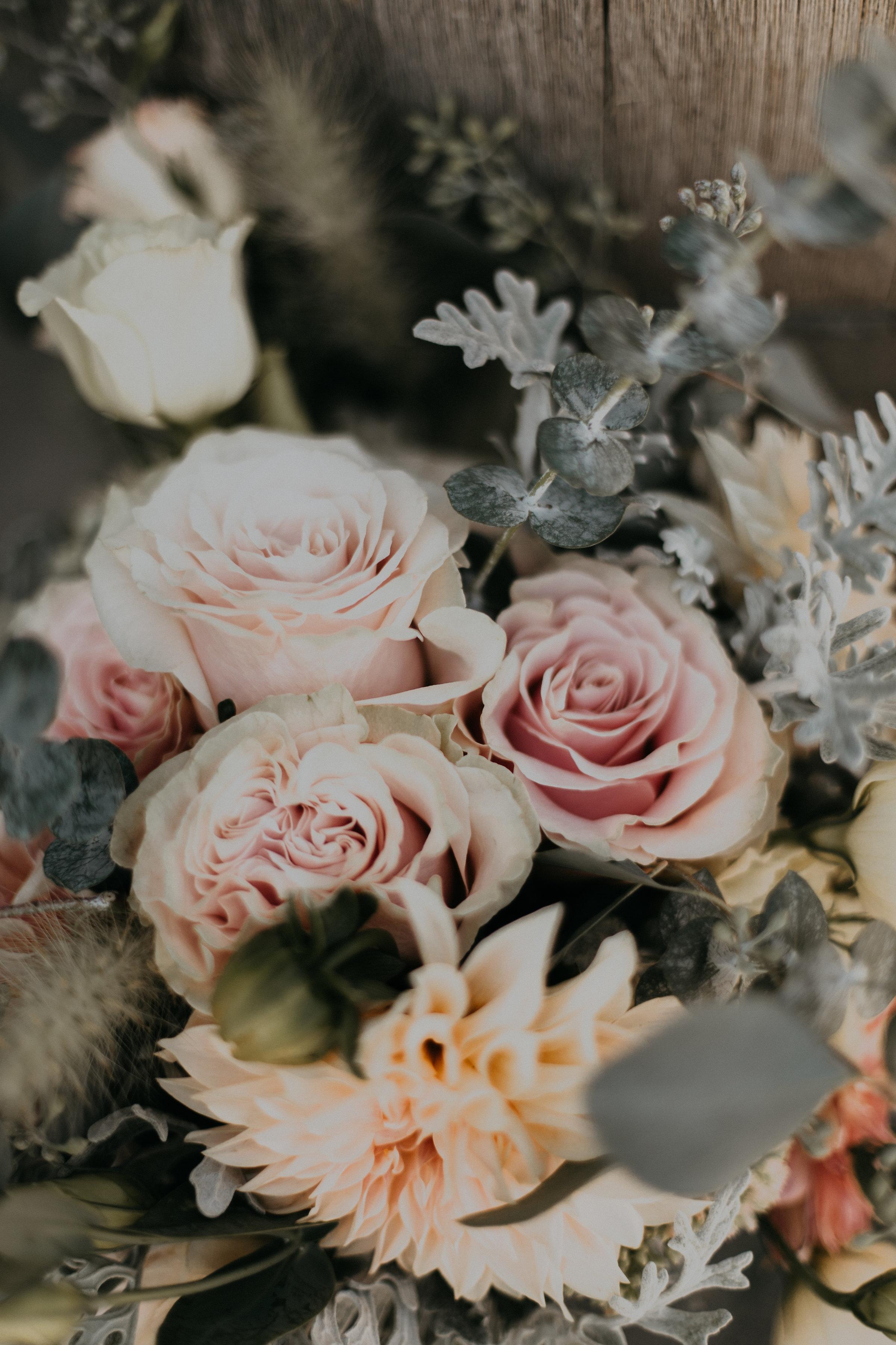 Ashley_Craig_Amourice_Vinyard_Wedding-261.jpg