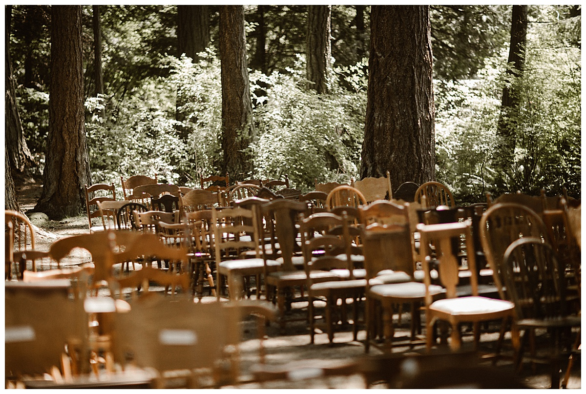 Bixby-+-Pine-Samantha-McFarlen-Kitsap-Memorial-State-Park-_0007.jpg