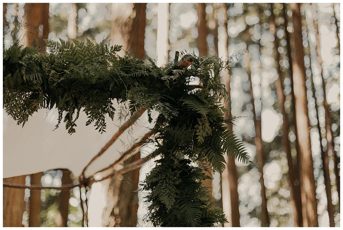 Bixby-+-Pine-Samantha-McFarlen-Kitsap-Memorial-State-Park-_0020.jpg