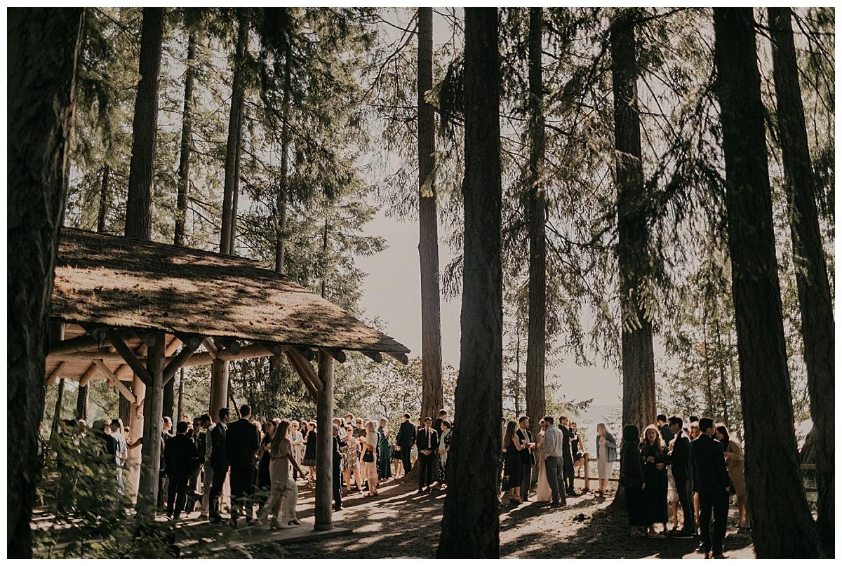 Bixby-+-Pine-Samantha-McFarlen-Kitsap-Memorial-State-Park-_0040.jpg