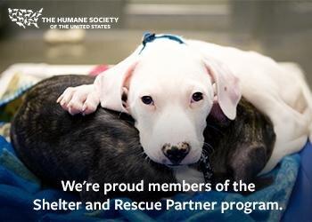 Heartland Small Animal Rescue Inc