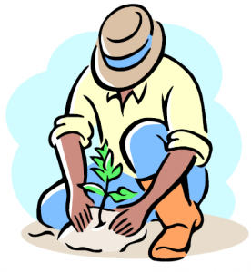 tree-planting-276x300.png