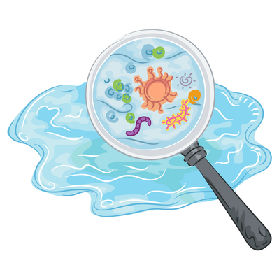 water-bacteria-cliparts-168964-1130319.png