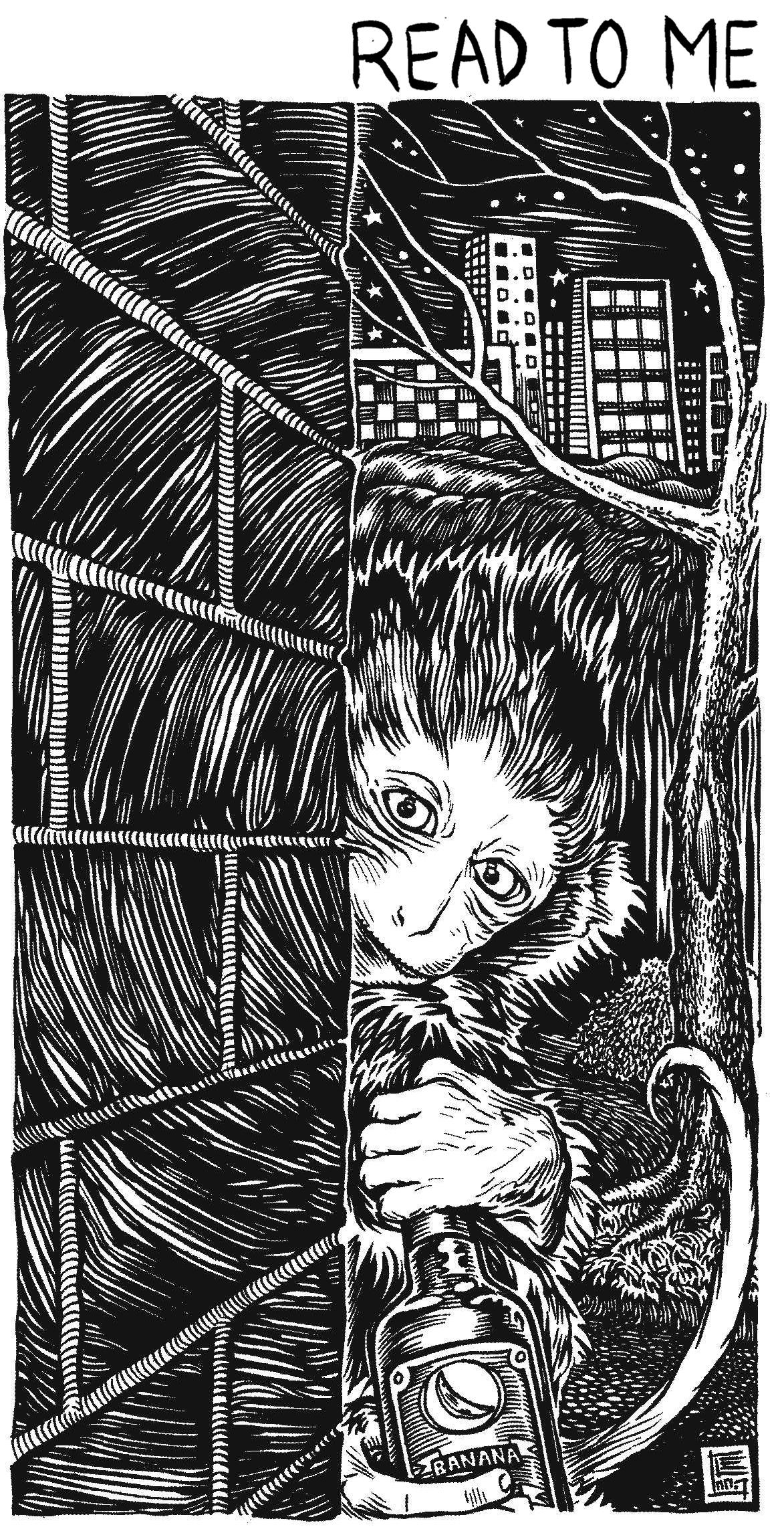 street monkey.jpg