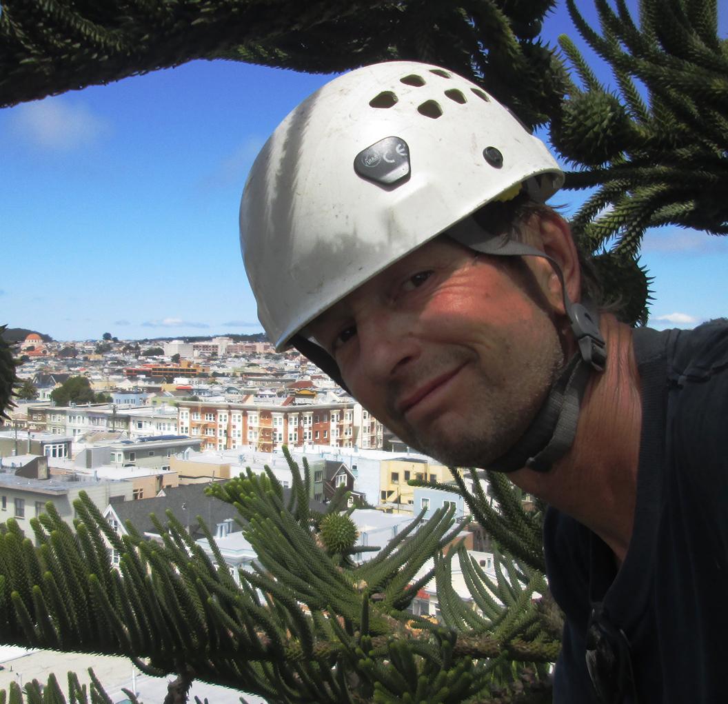 Bay Area Arborist Cooperative Ian Butler