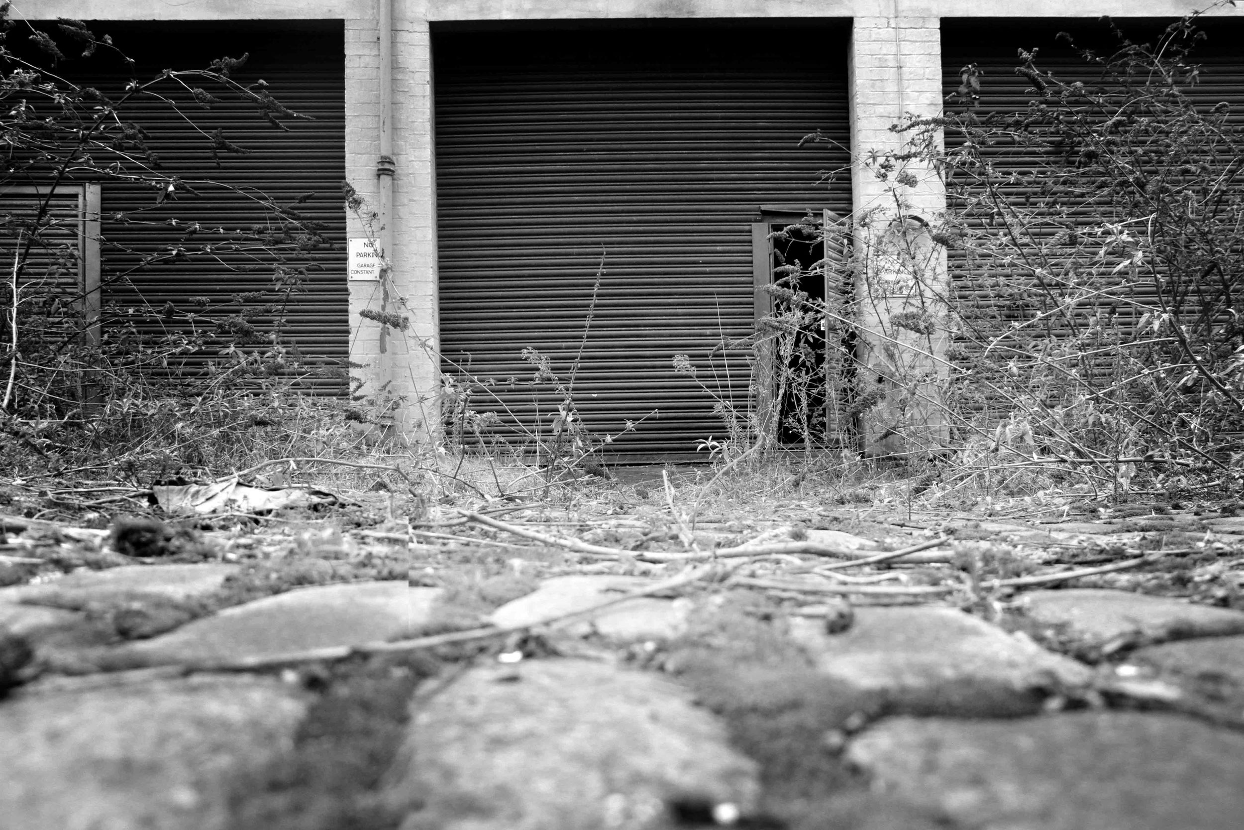 Hidden Door 07 bw v2 lo res.jpg