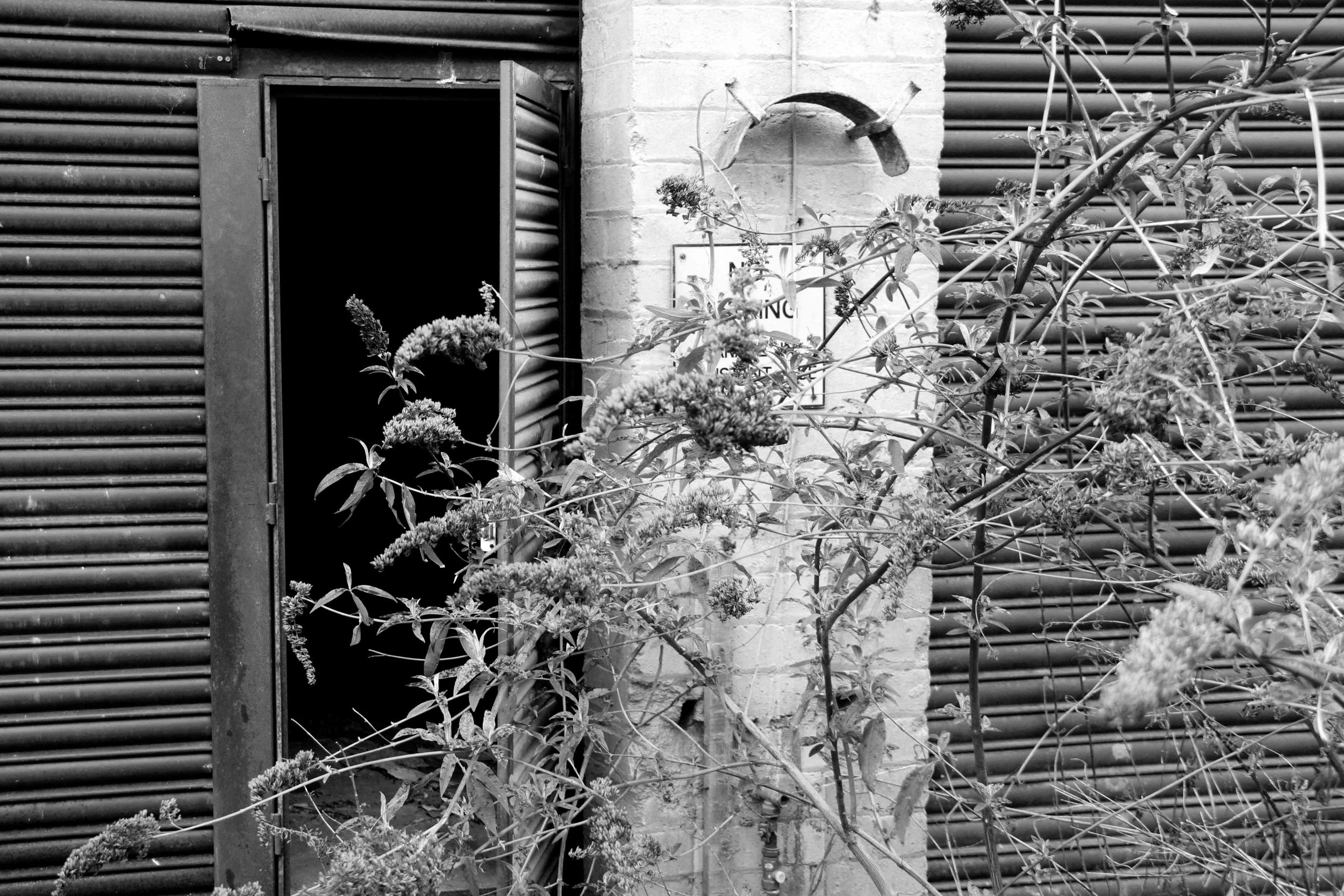 Hidden Door 06 bw lo res.jpg