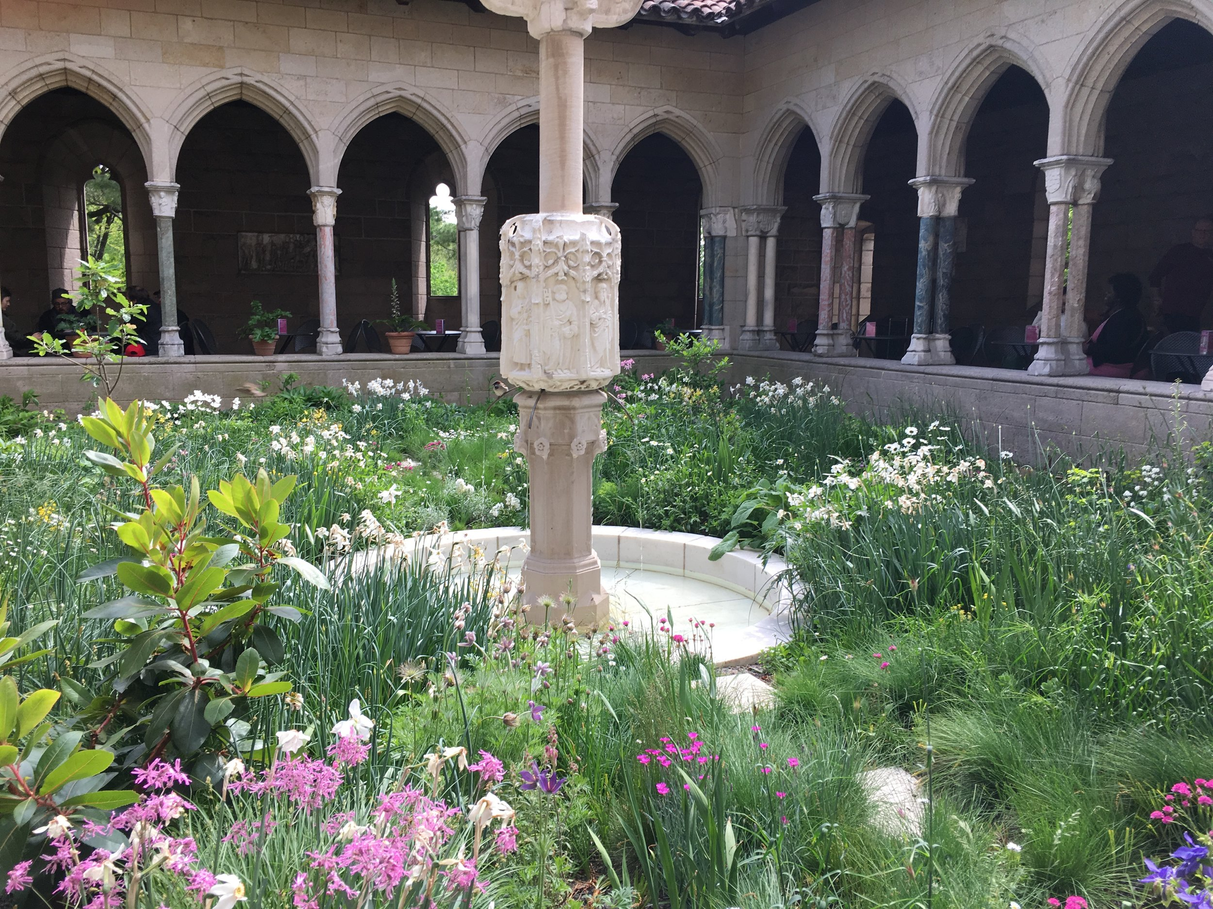 Gardens  - Specifically @ The Cloisters