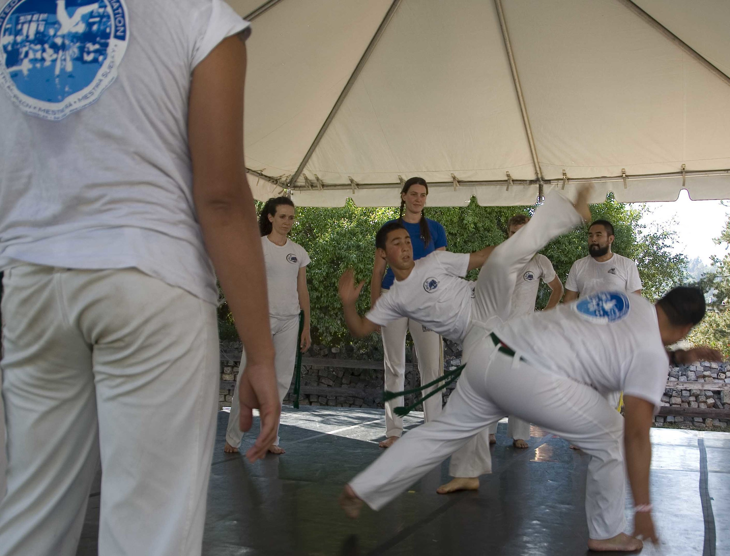 lr.Capoeira.3.LD12.jpg