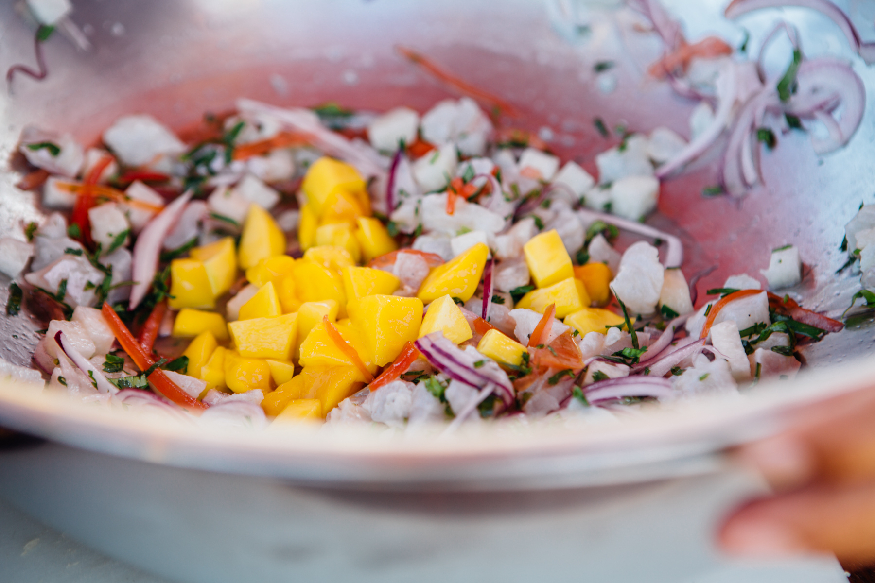 Ceviche in the Making, Cooking Lesson,  Azul Fives , Mexico