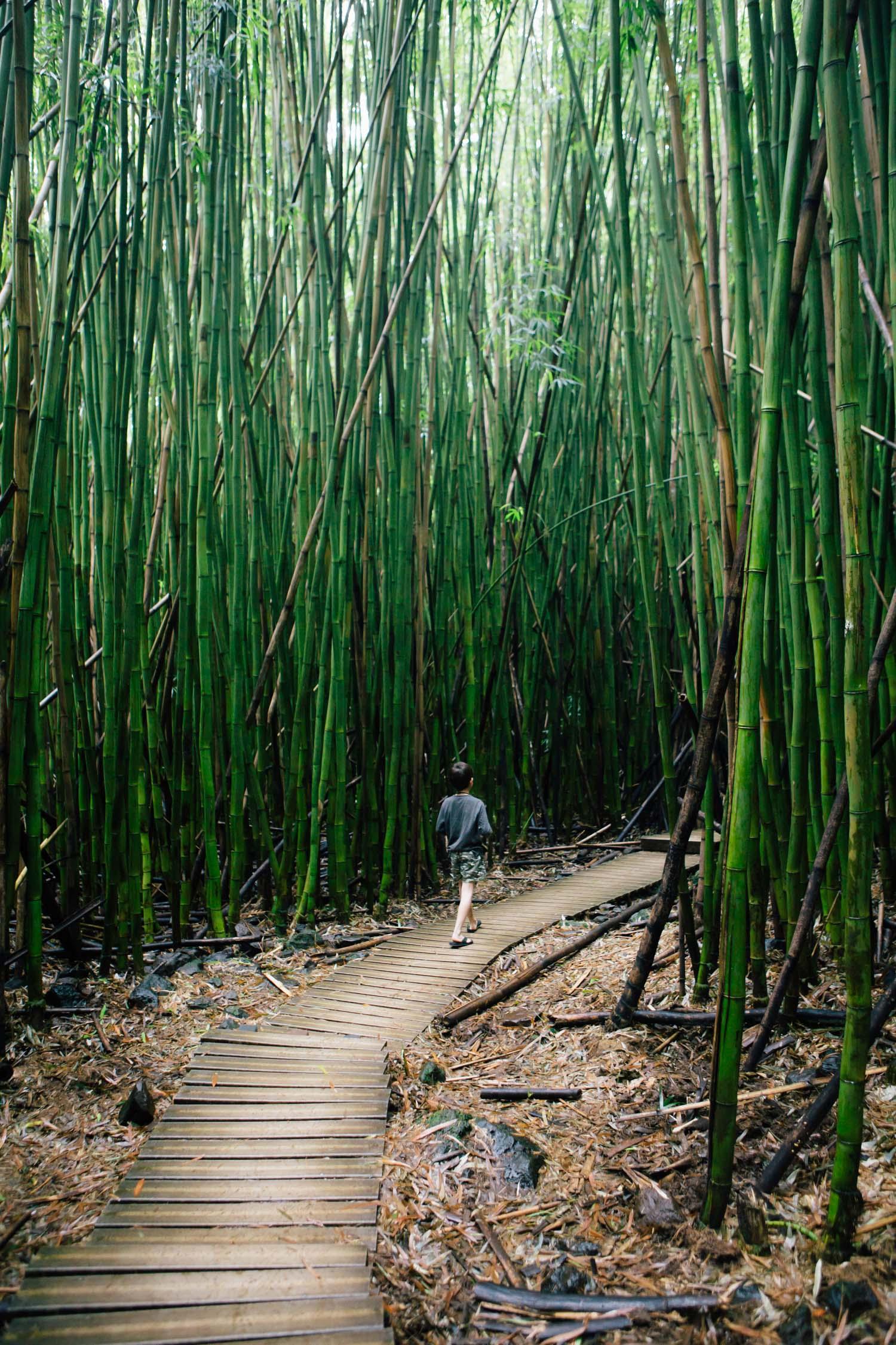 Hana, Maui, by Madeline Lu-27.jpg