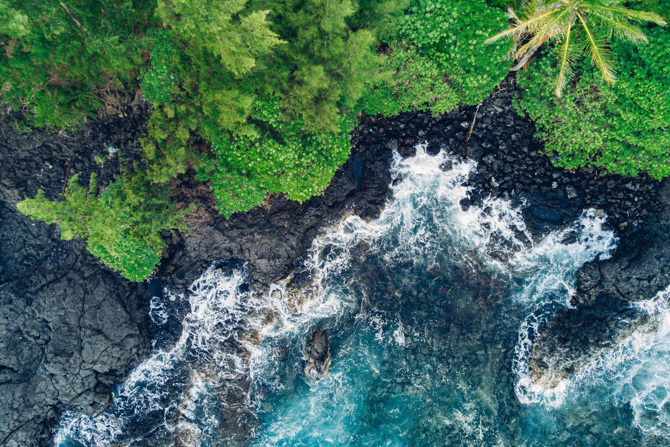 Hana, Maui, by Madeline Lu-17.jpg