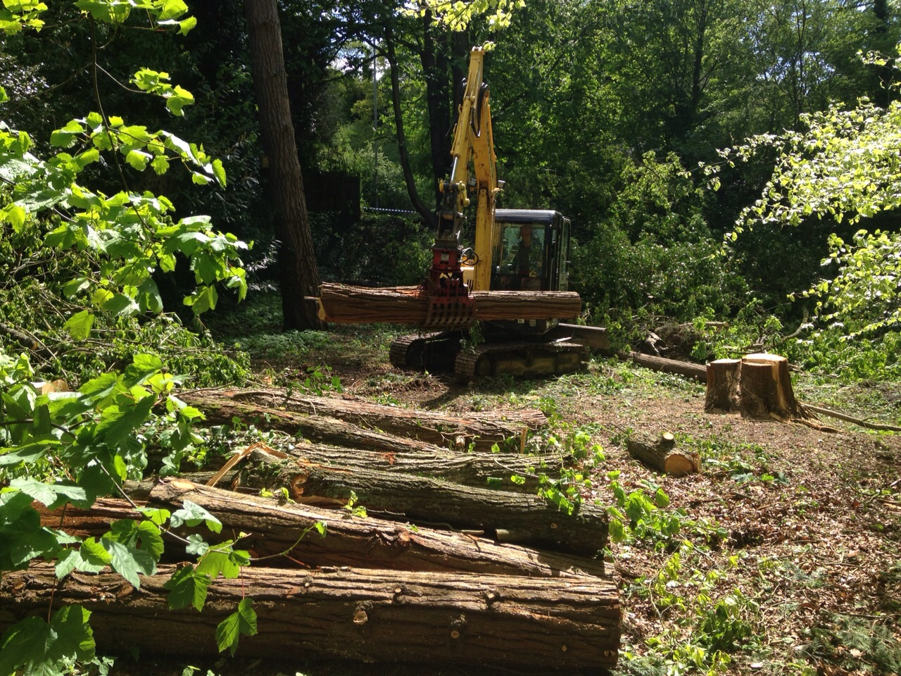 SITE CLEARANCE -