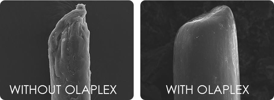 Olaplex -