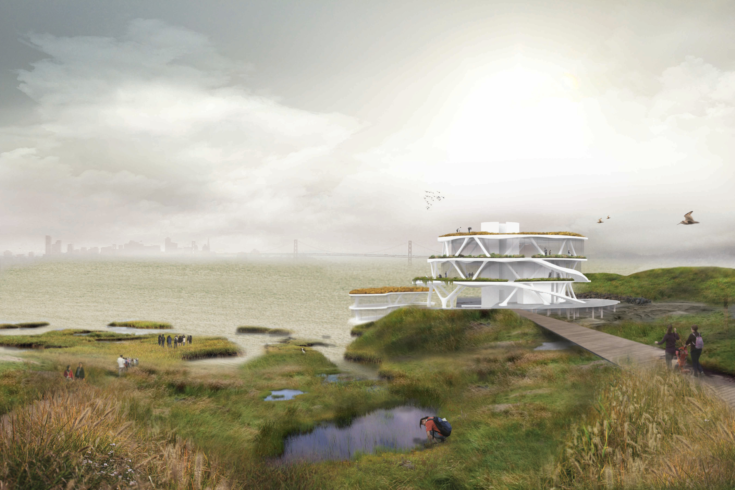 Rising Habitats, by Kenneth Hu and Susan Wing