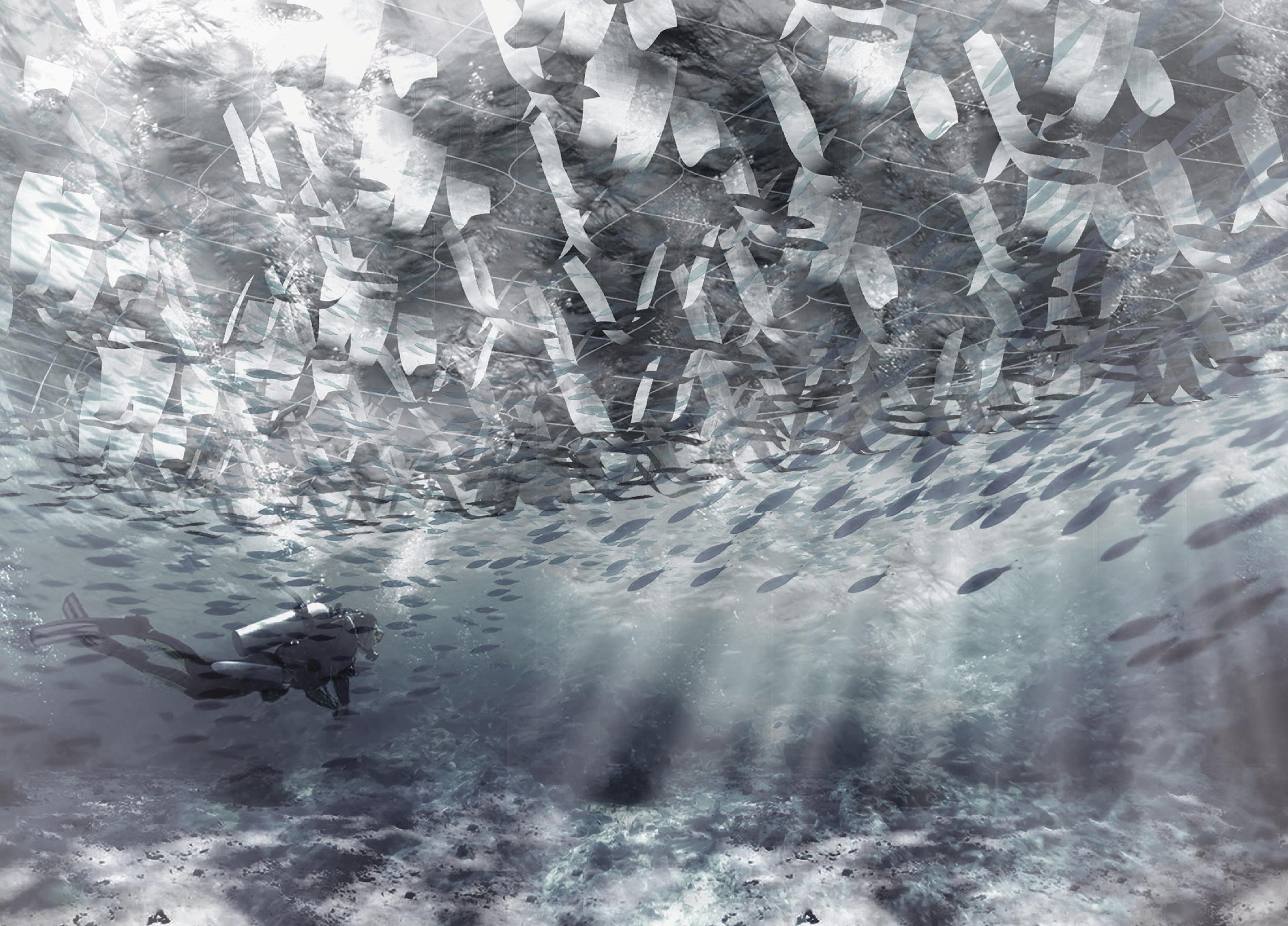 Inverted Ecologies, by Vaama Joshi and Shirin Monshipouri